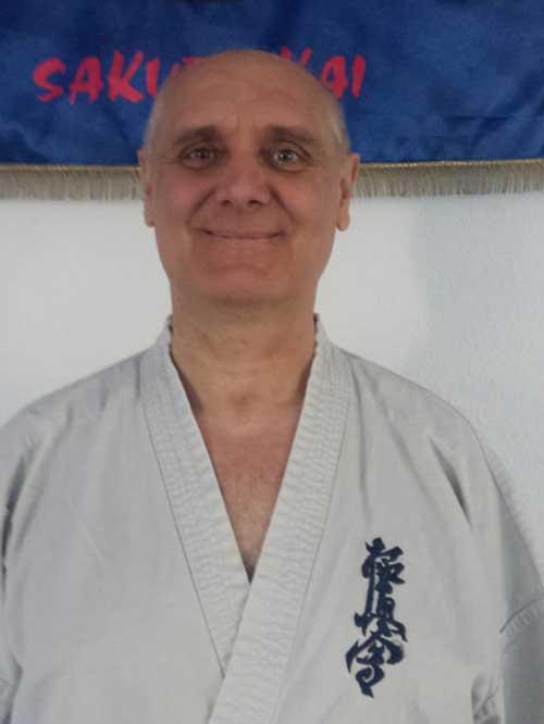 Csehi György
